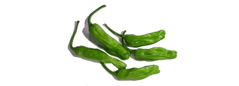 shishitopeppers